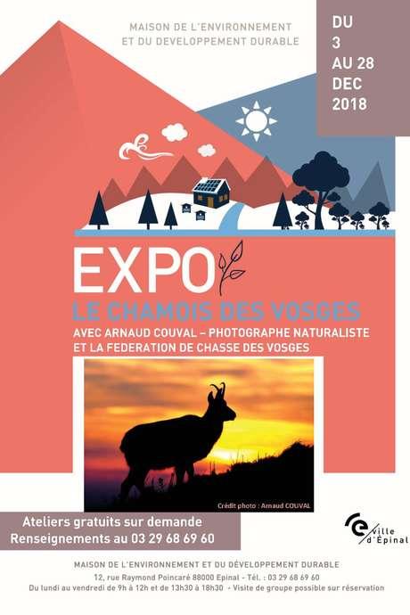 EXPO LE CHAMOIS DES VOSGES