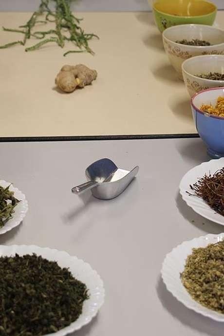 Atelier : Découverte des remédes à base de plantes
