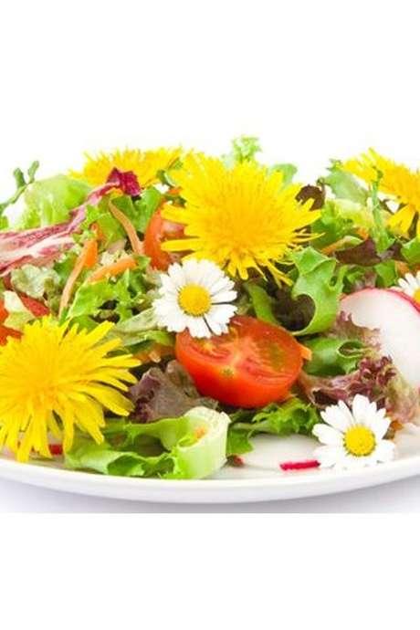 Reconnaissance des plantes et repas bio véggie
