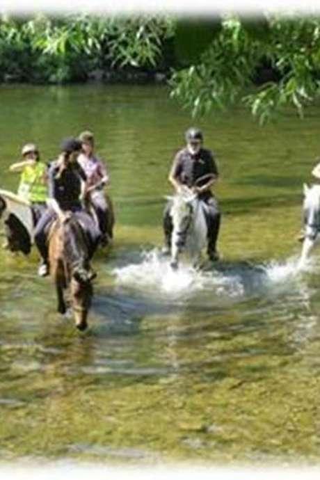 """Randonnée équestre """"baignade rivière"""""""
