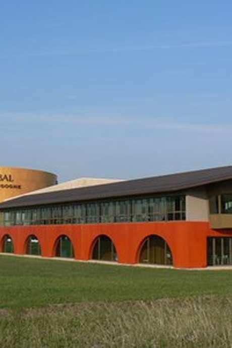 Veuve Ambal - Dégustation et visite du site de production ventes des vins 2018