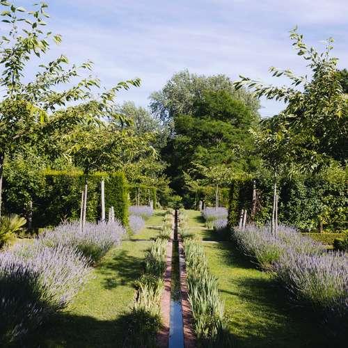 Domaine de Poulaines : Jardins et arboretum