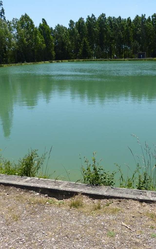 Étang de pêche : Les Bruyères