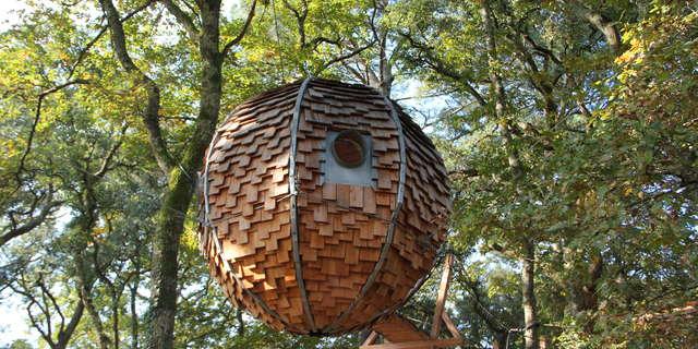 Les Cabanes du Menoy - Lov Nid
