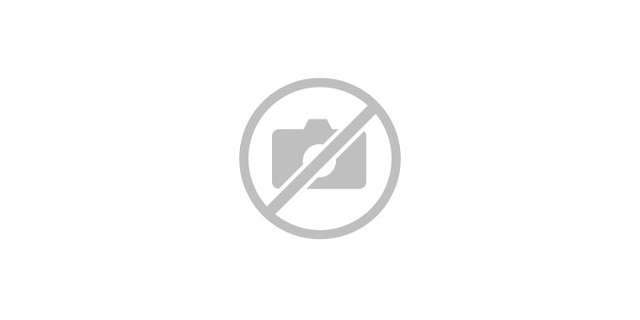 Flambeau, the mascot, on skis