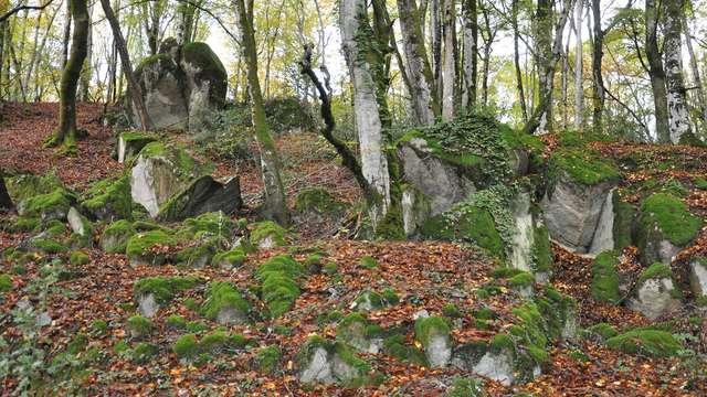 Circuit de randonnée  : Le tour du Jarissou