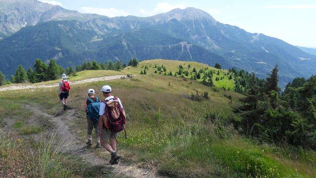 Accompagnateurs en montagne du Champsaur - randonnée