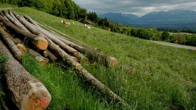 Alpage du Loty