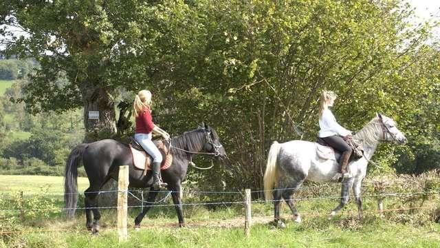 Ferme Equestre Kinet