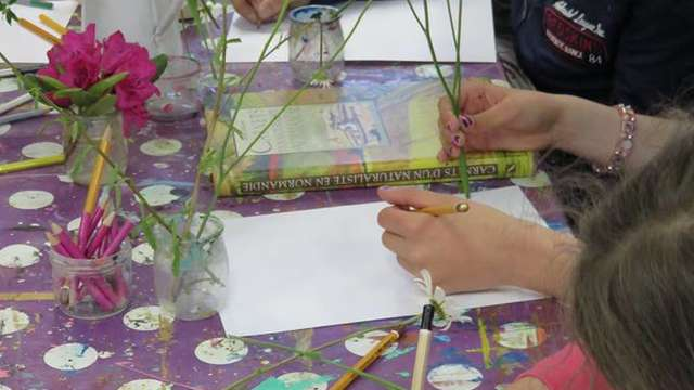 Plantes, usages et couleurs : ateliers en famille