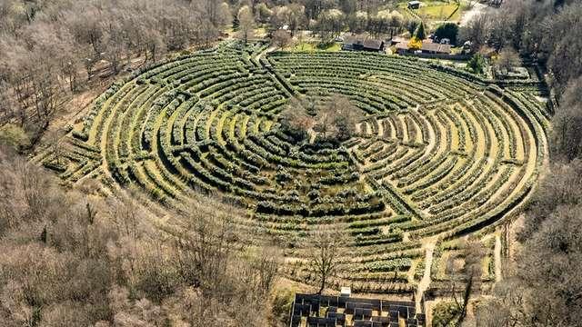 Labyrinthe Géant
