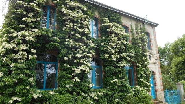 Chambres d'hôtes - L'Ecole buissonnière - Chambre verte