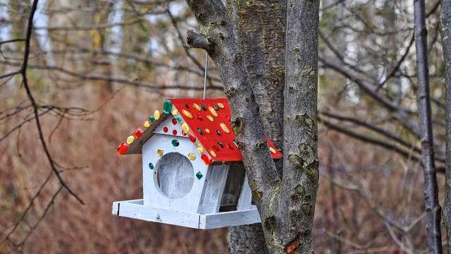 Atelier Nichoirs à oiseaux