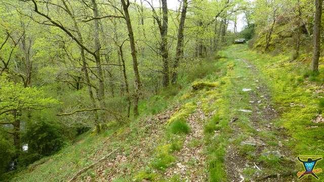 Découverte : Vallée du Chat Cros et Rougnat