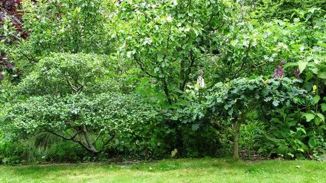 Visite du jardin de Kervasclet