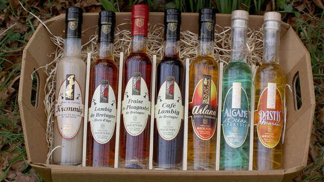 Distillerie Artisanale du Plessis et Musée de l'Alambic