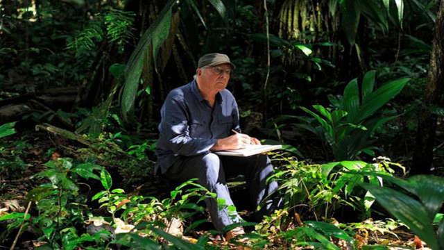 Conférence: Le voyage des plantes à l'époque de la Compagnie des Indes orientales