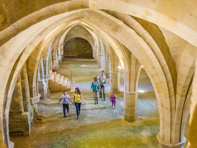 Visites guidées de l'abbaye Saint-Jean-des-Vignes