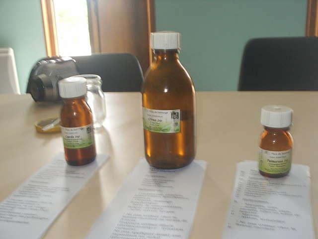 Découverte des plantes médicinales et des huiles essentielles