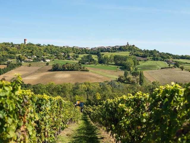 Les Vignerons du Quercy