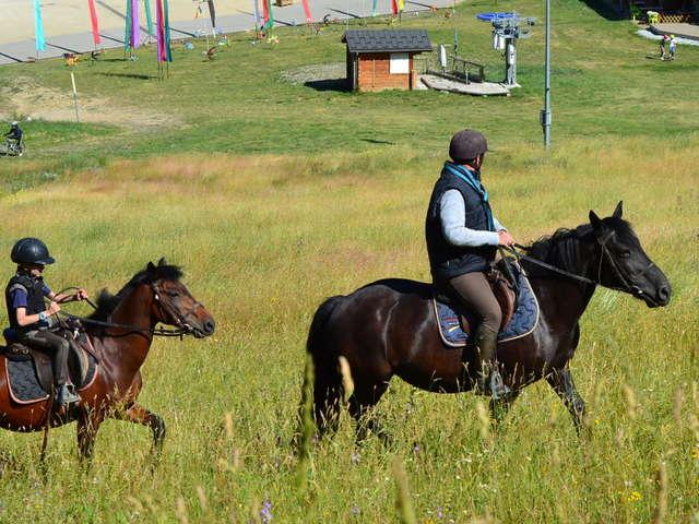 Ranch équestre