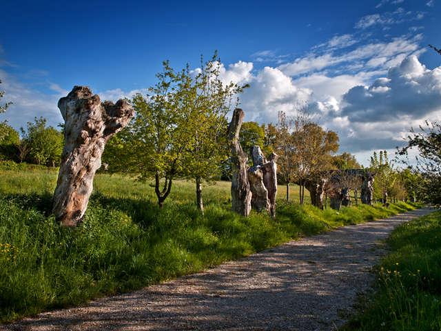 Les trois chemins/Chemin des Trognes