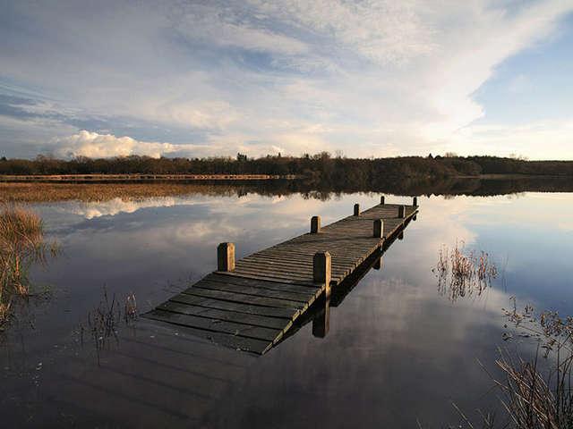 Etang du Moulin Neuf - Réserve Naturelle Régionale des Landes, prairies et étangs de Plounérin