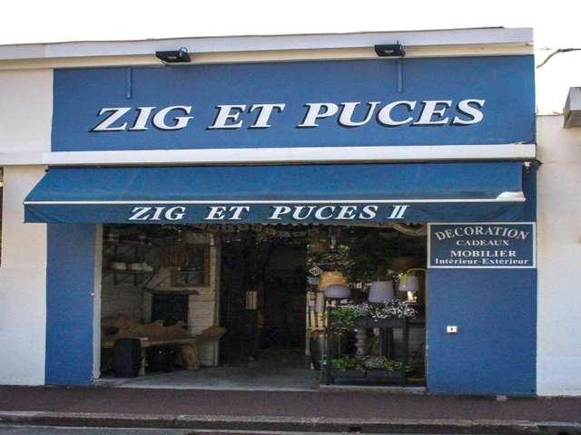 ZIG ET PUCES II