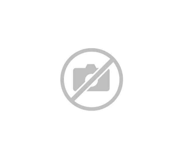Proust michel - la maison bleue