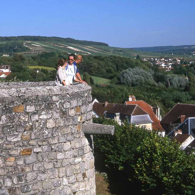 Les balcons de la Marne