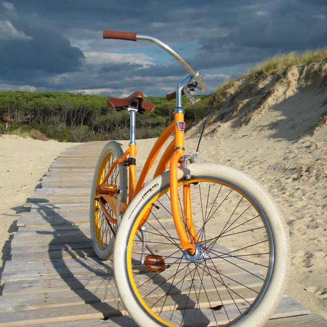 Rico Vélo Cycles et Pêche - Location de vélos