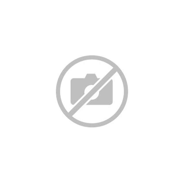 Cascade de glace avec un guide