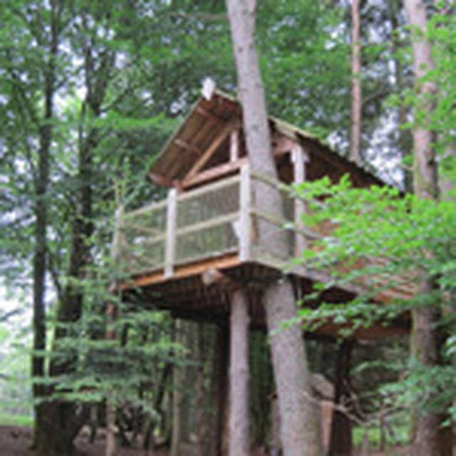 Cabane dans les arbres de la Ferme de Vassivière