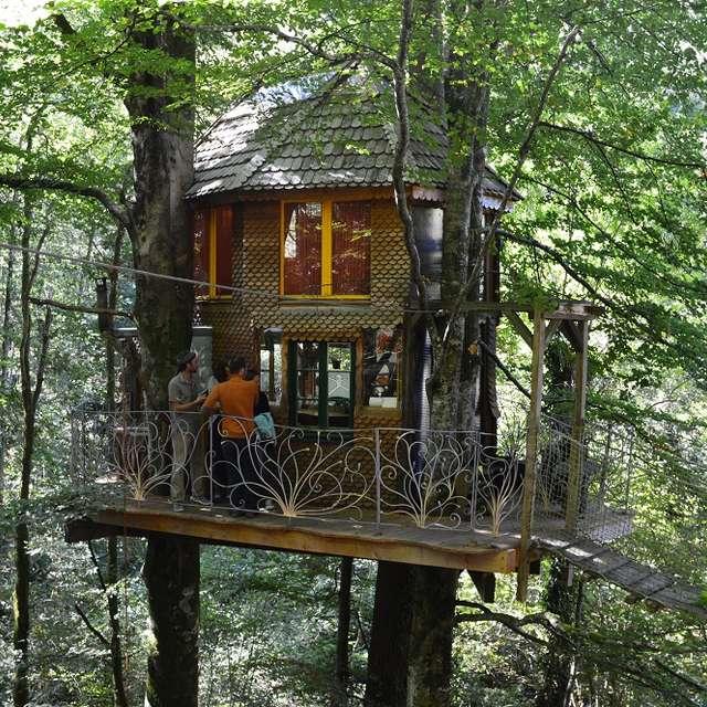 EcoSource Arboricole