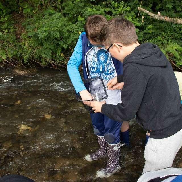 Découverte de la rivière et de ses petites bêtes