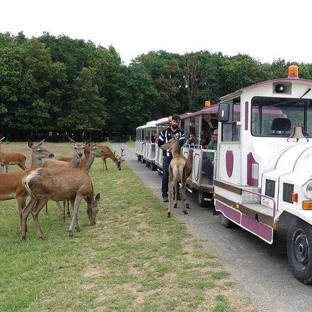 Réserve de Beaumarchais - Les grands gibiers d'élevage en Safari Train