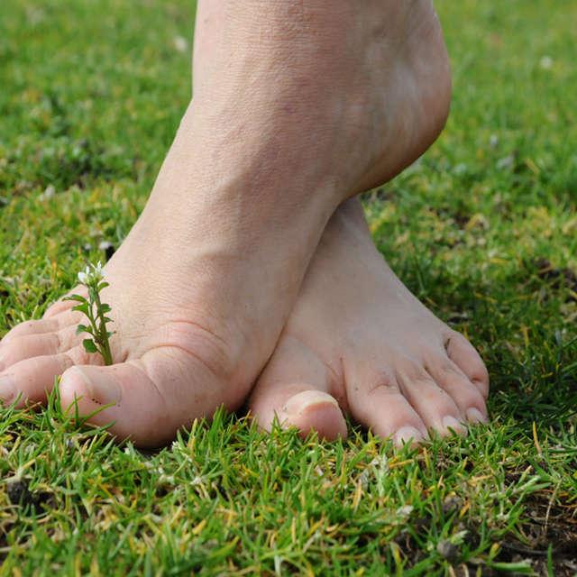 Sentier pieds nus - Loisirs Loire Valley