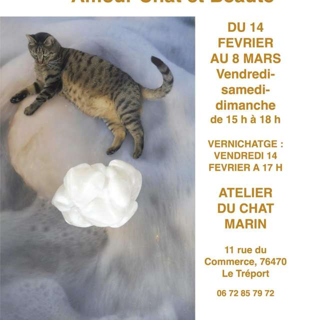 Exposition - Chat Valentin 2020