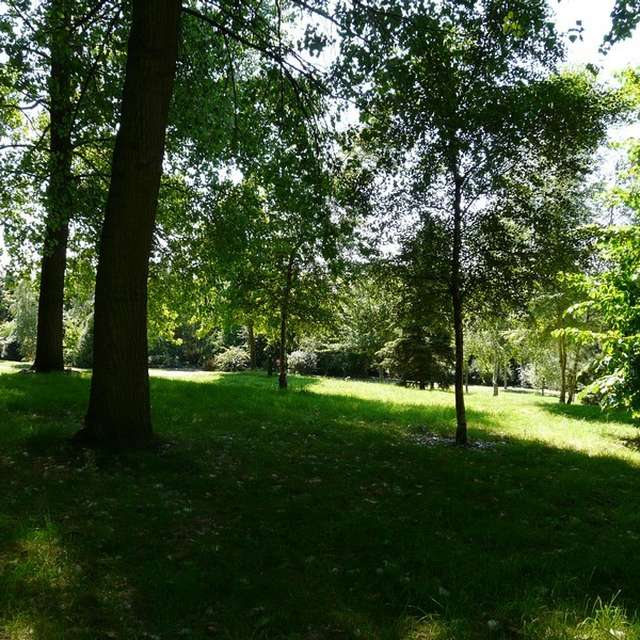 Jeu de piste à l'arboretum