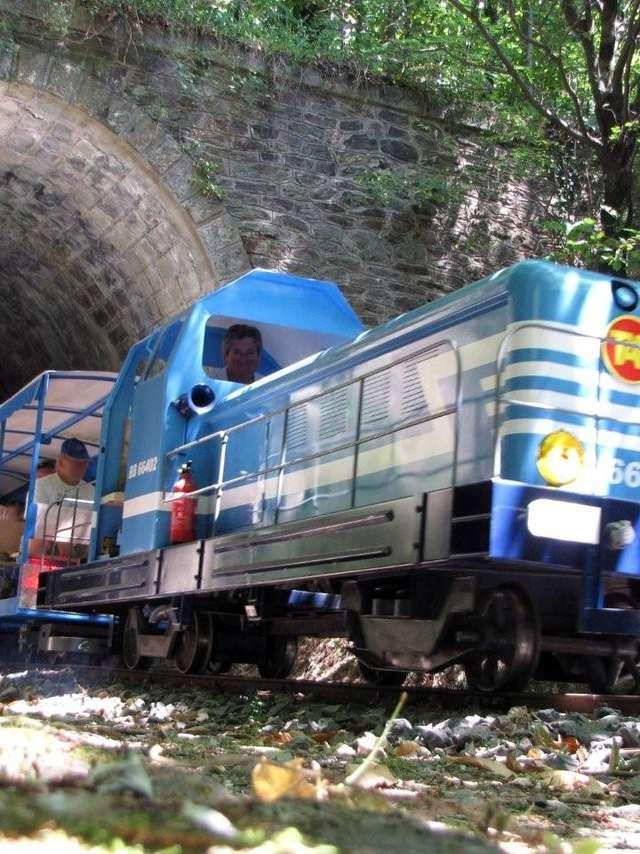 LE TAC : TRAIN DE L'ANDORGE EN CÉVENNES