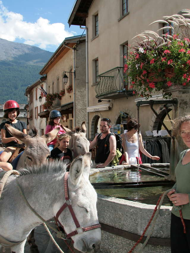 Rando ânes accompagnées