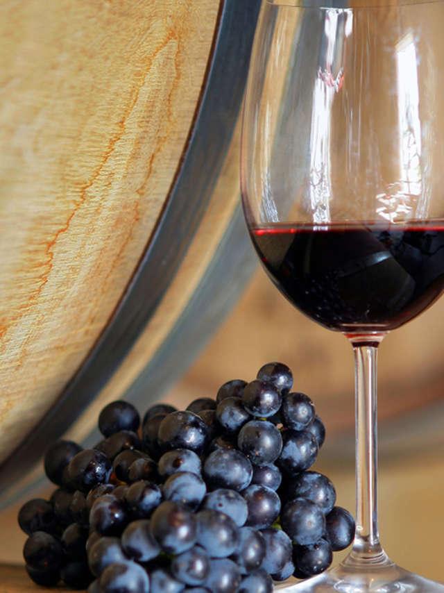 Salon des vins au château de Cheverny