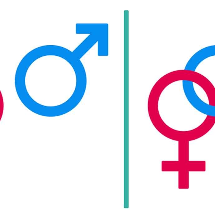 Festival féminin masculin: un temps consacré aux femmes et aux hommes