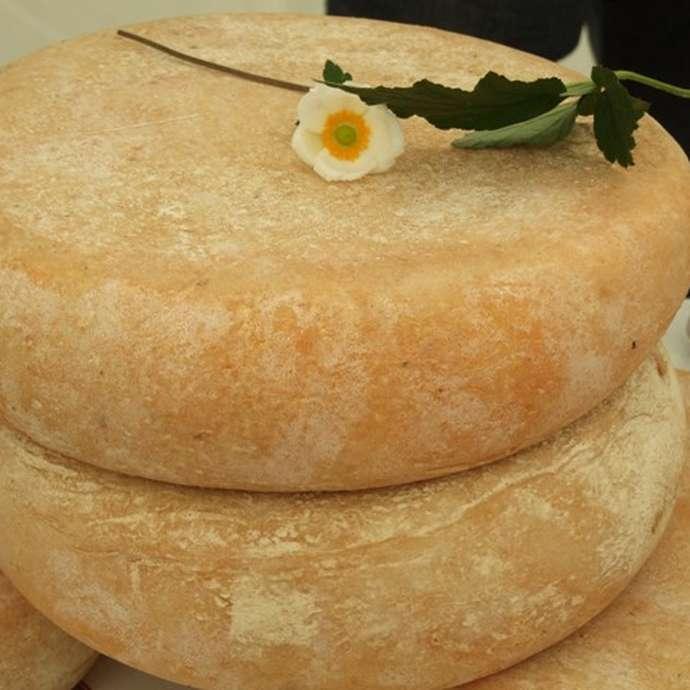 """Soirée découverte du fromage """"Val d'Azun Pyrénées"""" avec repas de la ferme des Bordères"""